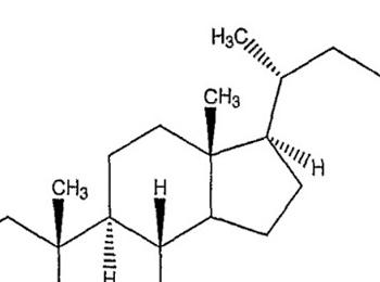 """Tóm tắt """"nghiên cứu một số thành phần hóa học của cây Dong riềng đỏ trồng ở Thái Nguyên"""""""