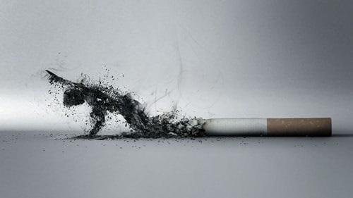 Hút thuốc lá được xem là có liên quan đến 30% trường hợp tử vong do bệnh tim mạch