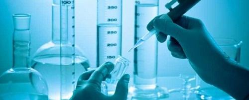Nghiên cứu hóa học về thực vật chi Canca